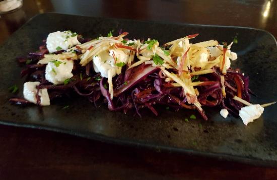 dev-cat-red-warm-salad